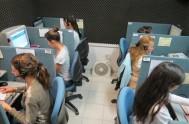 Sumate al Voluntariado de Radio María Argentina. ¡Hay muchas posibilidades! En Radio María podés donar tus talentos, para hacer posible que este mensaje…