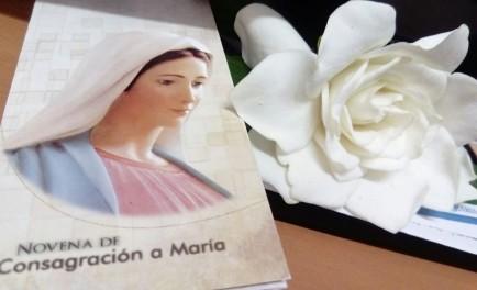 16/11/2016 - El 8 de diciembre, día de la Inmaculada Concepción, tendremos la gran alegría como Radio María Argentina de celebrar 20 años en el aire de la radiofonía. Ese día, como…