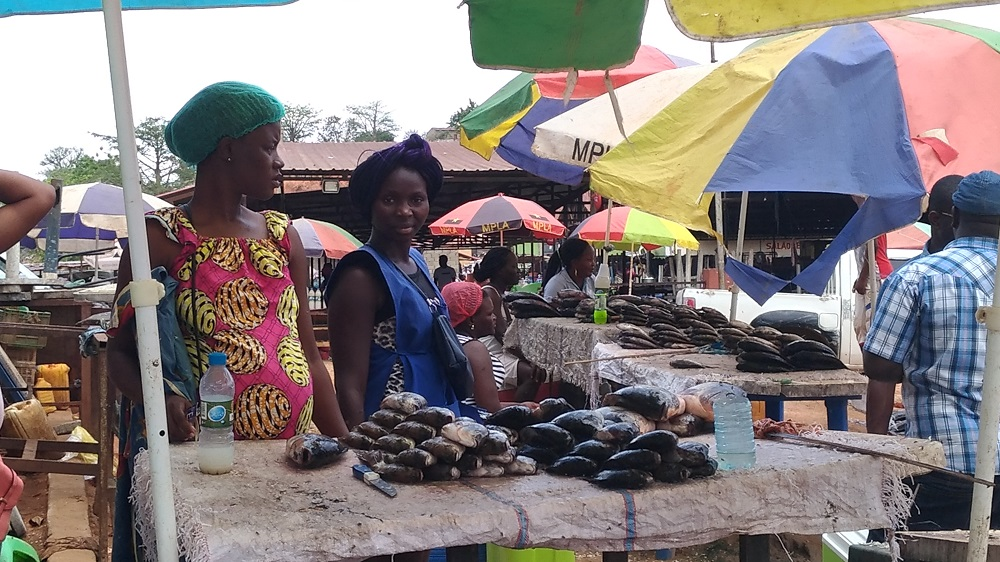 Angola - Mercado (venta de pescado)