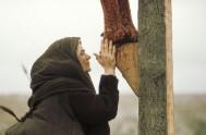 """[audio mp3=""""http://radiomaria.org.ar/_audios/60410.mp3""""][/audio] 15/09/2021 -En el Evangelio de hoy Juan 19, 25-27 aparece María al pie de la Cruz y el Señor invitándola a…"""