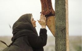 15/09/2021 –En el Evangelio de hoy Juan 19, 25-27 aparece María al pie de la Cruz y el Señor invitándola…
