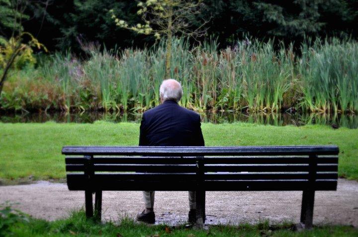 Senior man sitting on bench in garden.