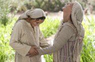 22/11/18 – En el Evangelio de hoy Jesús llora el pecado de su pueblo. Nos hagamos uno, desde nuestras lágrimas, con las lágrimas…
