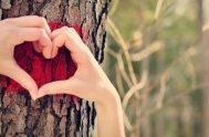 """""""En el amor no hay temor. El amor perfecto echa fuera el temor, pues…"""