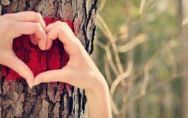 """""""En el amor no hay temor. El amor perfecto echa fuera…"""