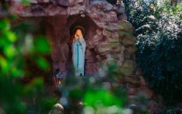 """13/02/2019 – """"Los santuarios que podemos reconocer como los más importantes en honor a Nuestra Señora de Lourdes en Argentina,…"""
