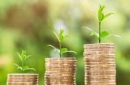 """29/04/2019 – """"La economía ecológica es lo que se conoce como gestión de la sustentabilidad, y cuando hablamos de sustentabilidad, tiene que ver…"""