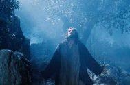 """[audio mp3=""""https://radiomaria.org.ar/_audios/37790.mp3""""][/audio] 18/04/2019 El padre Carlos Vallés, sacerdote jesuita español nos brinda esta profunda reflexión a partir del Salmo 114, en torno a…"""