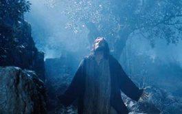 """18/04/2019 El padre Carlos Vallés, sacerdote jesuita español nos brinda esta profunda reflexión a partir del Salmo 114, en torno a la Pasión, muerte y Resurrección del Señor: """"Me envolvían redes de muerte, me alcanzaron los lazos del abismo, caí en tristeza y angustia. Invoqué el nombre el Señor, «Señor, salva mi vida». El Señor es benigno y justo, nuestro…"""
