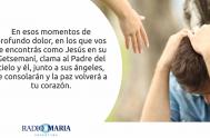 21/05/2019 – Catequesis en un minuto Martes de la V semana de Pascua Jesús dijo a sus discípulos: «Les dejo la paz, les…
