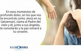 21/05/2019 – Catequesis en un minuto Martes de la V semana de Pascua Jesús dijo a sus discípulos: «Les dejo…