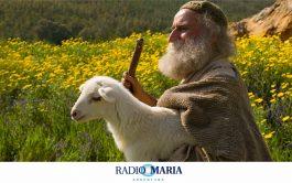"""13/05/2019 – Catequesis en un minuto Jesús dijo a los fariseos: """"Les aseguro que el que no entra por la…"""
