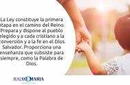 Catequesis en un minuto 12/06/2019 –Miércoles de la décima semana del tiempo ordinario Jesús dijo a sus discípulos: «No piensen que vine para…