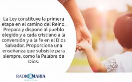 Catequesis en un minuto 12/06/2019 –Miércoles de la décima semana del tiempo ordinario Jesús dijo a sus discípulos: «No piensen…