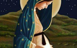 17/08/2019 – EnEstación María te invitamosa recorrer la historia de la Virgen de la Dulce Espera en nuestro país. Esta…