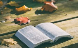 """Camino de consagración a María (Día 16)  29/11/2019 –Viernes de la trigésima cuarta semana del tiempo ordinario """"Y…"""