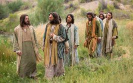 """13/01/2020 –""""Después  que  Juan  fue arrestado,  Jesús se  dirigió a Galilea. Allí proclamaba la Buena…"""