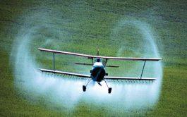 21/02/2020 – En los campos argentinos, los productores locales utilizan 107 plaguicidas que están prohibidos en el mundo. Así lo…