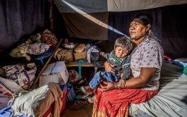 18/02/2020 –Con motivo de lo ocurrido en el Chaco salteño, donde han muerto ocho niños por problemas relacionados con la…