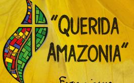 13/02/2020 –Se publicó esta semana la Exhortación post-sinodal sobre la Amazonia. El documento traza nuevos caminos de evangelización y cuidado…
