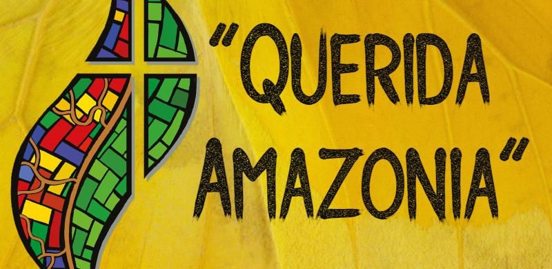 13/02/2020 -Se publicó esta semana la Exhortación post-sinodal sobre la Amazonia. El documento traza nuevos caminos de evangelización y cuidado del ambiente y de los pobres. El Papa Francisco desea un nuevo impulso misionero y alienta el papel de los laicos en las comunidades eclesiales. La preocupación por el futuro de la selva amazónica, de su frágil equilibrio ecológico, del…