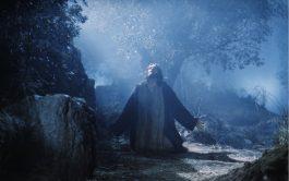 26/03/2020 – Hoy llegamos al día 22 de los ejercicios y contemplamos a Jesús que está de cara a su…