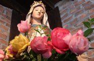 """16/03/2020 – Comenzamos el espacio """"Conociendo a María"""" junto a Hna. Clara María Temporelli,religiosa de la Orden de la Compañía de María Nuestra…"""