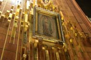 08/04/2020 – La Presidencia del Consejo Episcopal Latinoamericano (Celam) celebrará el domingo 12 de abril, en Pascua de Resurrección, un acto de consagración…