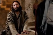 15/4/2020 Esta semana, junto al padre Francisco Palacios, continuamos nuestro recorrido sobre la vida del apóstol Pedro, una figura muy presente en este…