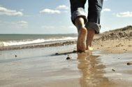 01/04/2020 – Hoy contemplamos a Jesús en la orilla del mar de Tiberíades. Un Jesús que sorprende con sus gestos, es el mismo,…