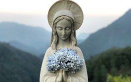 03/04/2020 – En Madre del Pueblo, nos visitó el padre Guillermo Cassone quien reflexionó en torno a la figura de…