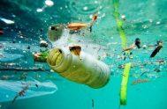 27/07/2020 –El flujo anual de plásticos hacia nuestros océanos se triplicará en los próximos 20 años, lo que podría sumar 110 libras de…
