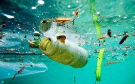 27/07/2020 –El flujo anual de plásticos hacia nuestros océanos se triplicará en los próximos 20 años, lo que podría sumar…