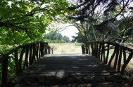 09/07/2020 – El tiempo de cuarentena como un llamado a tender puentes fue el tema abordado por el padre Alejandro Puiggari, Guadalupe García…