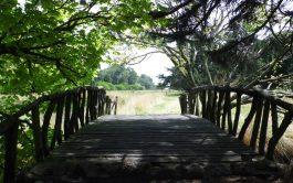09/07/2020 – El tiempo de cuarentena como un llamado a tender puentes fue el tema abordado por el padre Alejandro…