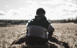 28/07/2020 – En el Evangelio de hoy, Mateo 13,36-43, Jesús explica la presencia de la cizaña en el campo de…
