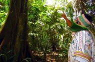 """19/10/2020 – Continuamos profundizando en la Exhortación Apostólica """"Querida Amazonia"""" del Papa Francisco, desde nuestro espacio """"Enseñanzas desde el Magisterio de la Iglesia"""",…"""
