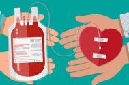 09/11/2020 Dr. Fabian Romano, no visita en el programa para poder charlar sobre la importancia del ser donantes de sangre. Además, nos aclara…