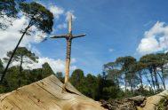 """[audio mp3=""""https://radiomaria.org.ar/_audios/55937.mp3""""][/audio] 04/05/2021 -En en Juan 14, 27-31 en la palabra de Dios hoy se nos dice «Les dejo la paz, les doy…"""