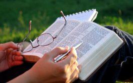 09/06/2021 –En Mateo 5, 17-19 Jesús que viene traer una nueva ley dice algo que sorprende: Yo no vine a…