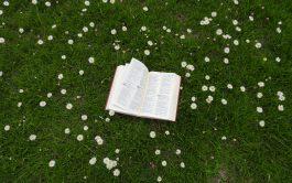 19/08/2021 – El Señor, que es verdadero, me comunica su verdad en su Palabra. Esa Palabra siempre nos supera, excede…