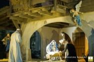 19/12/2016 – En el día de ayer el Papa Francisco compartió el rezo del Ángelus junto a miles de fieles presentes en la…