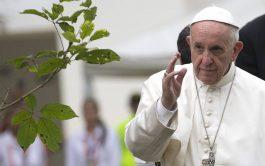 01/01/2019 – Compartimos el mensaje del Santo Padre con motivo de la celebración de la 52ª Jornada Mundial de la…