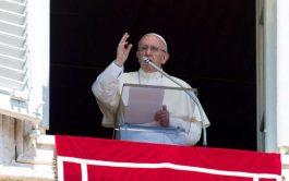 14/01/2019 – A la hora del Ángelus, en la solemnidad del Bautismo del Señor, el Papa Francisco invitó a regenerar…