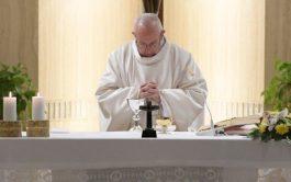 07/02/2019 – Durante la celebración de la Misa matutina en Santa Marta el Santo Padre Francisco afirmó en su homilía…