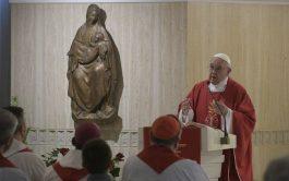 """11/06/2019 –Durante la Misa celebrada hoy en la Casa Santa Marta, el Papa Francisco recordó que """"la salvación no se…"""