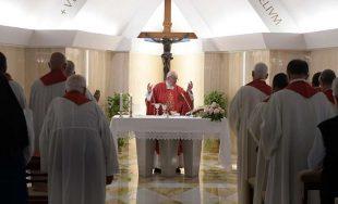 16/09/2019 –El Papa Francisco animó a los cristianos, durante la Misa celebrada este lunes 16 de septiembre…