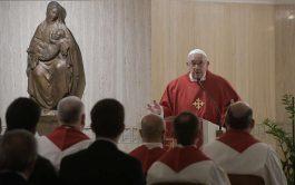 12/11/2019 –En su homilía de la Misa celebrada en la Casa Santa Marta de este 12 de noviembre, el Papa…
