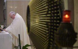 14/02/2020 – En la homilía de la Misa celebrada por el Papa Francisco en Casa Santa Marta animó a valorar…