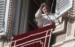 09/02/2020 –El Papa Francisco explicó, durante el rezo del Ángelus de este domingo 9 de febrero, cómo un discípulo de…